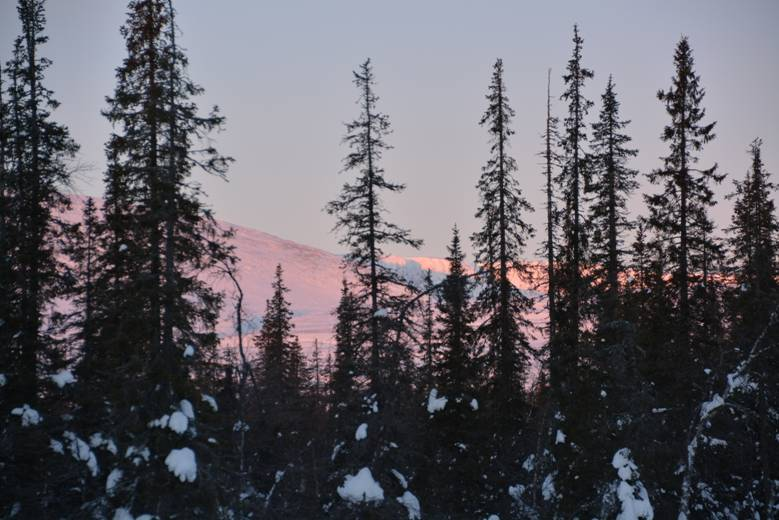 Отчет о лыжном туристском походе I категории сложности по Ловозёрским тундрам
