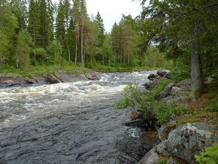 Отчет  о водном туристском походе 3-й категории сложности по реке Охта