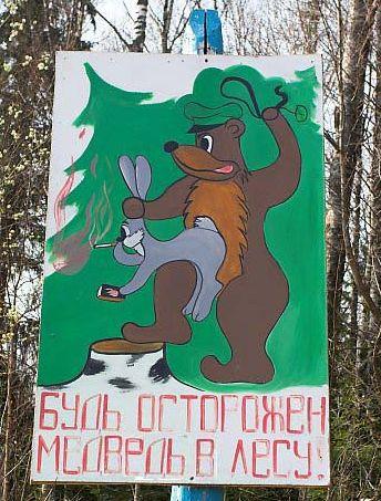 медведь педофил